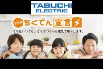 田淵蓄電池イメージ